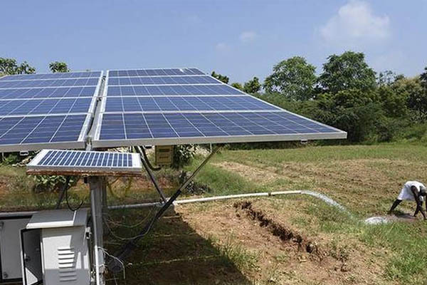 Powering the future of agriculture with Novergy solar water pumps